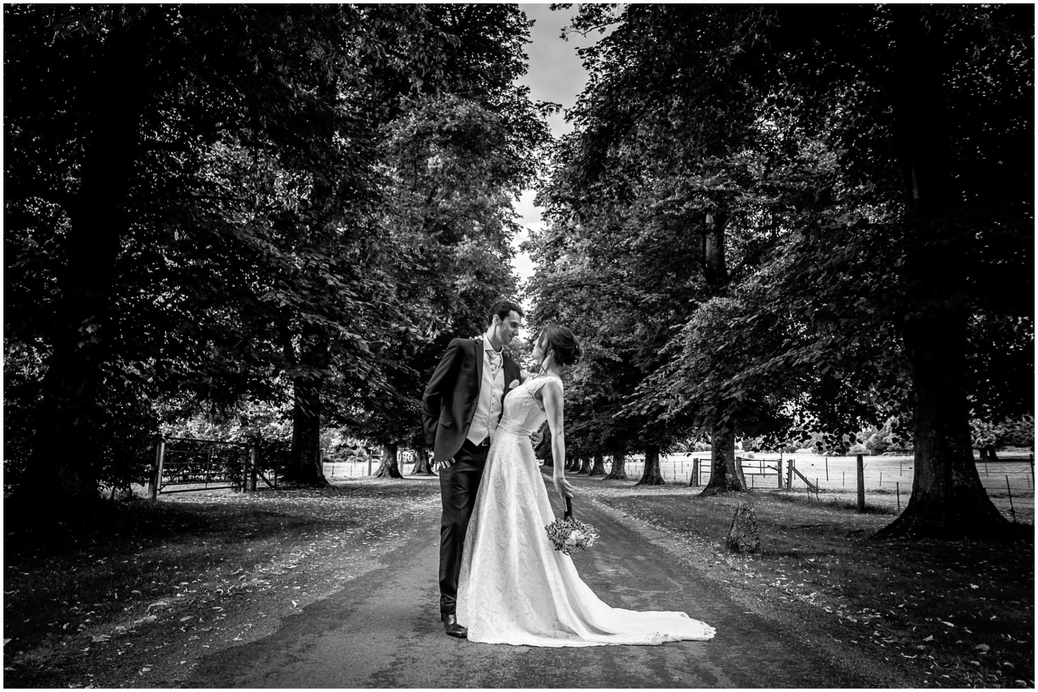 Avington Park Wedding Photographer Bride & Groom in Avenue of Trees 002
